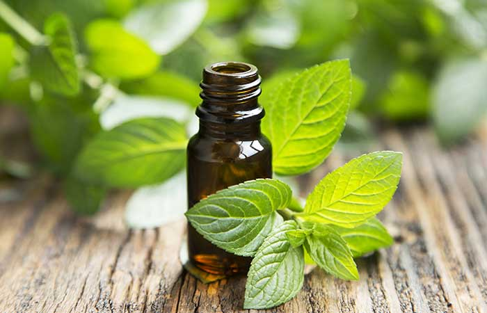 a. Peppermint Essential Oil